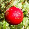 Christmas ball Mystic Red 8 cm