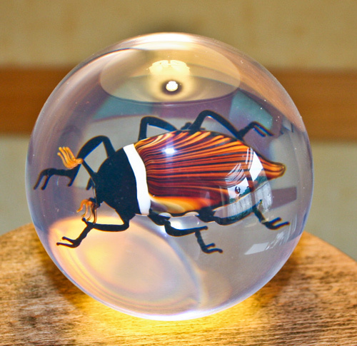 Paperweight Cockchafer
