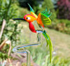 Orchid rod Hummingbird big