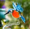 Orchid rod Kingfisher