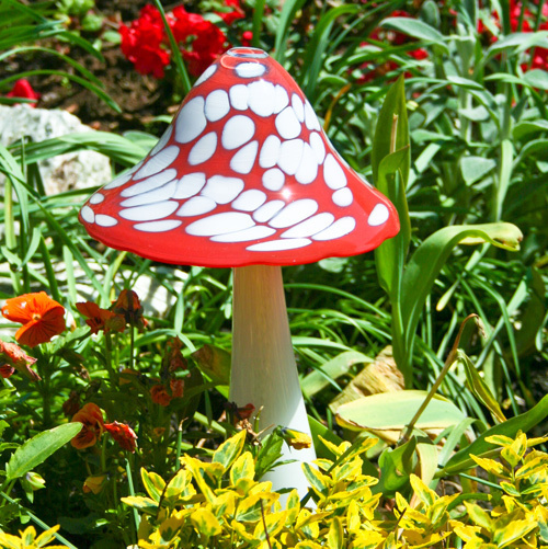 Fly agaric big