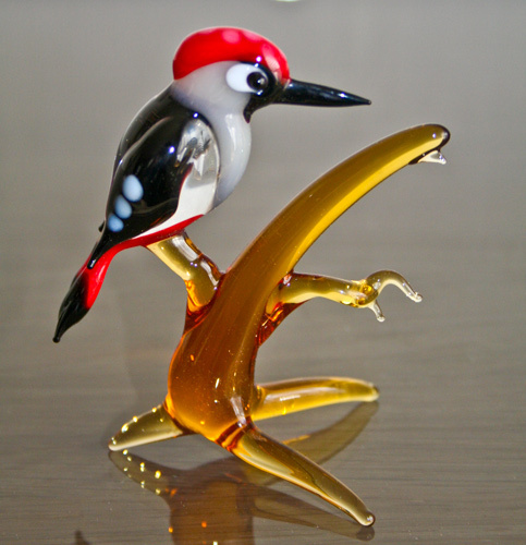 Woodpecker on a bought